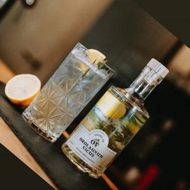Gin _ Orolaunum Vicus - Belge & bio